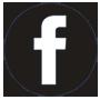 Facebook Les Stages de modelage en papier mâché