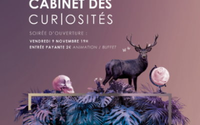 10 & 11 novembre – Salon Cabinet de Curiosités