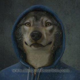 Toile 20 cm x 20 cm Jeune loup