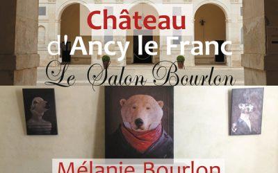 Salon d'été au Merveilleux Château d'Ancy le Franc en Bourgogne