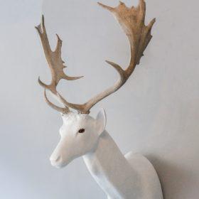 Daim- Sculpture en papier de Mélanie Bourlon - 38 Le Avenières - Isère - Rhône-Alpes - France - Photo : Anthony Cottarel