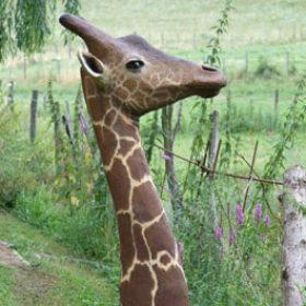 Girafe- Sculpture en papier de Mélanie Bourlon - 38 Le Avenières - Isère - Rhône-Alpes - France - Photo : Anthony Cottarel