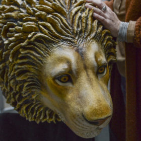 lion silure